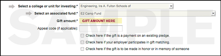 Preview of online giving form